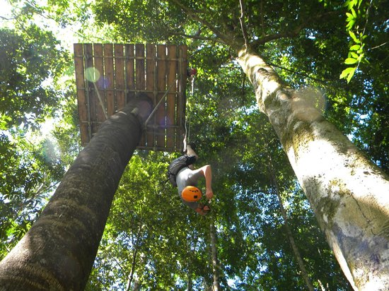 Osa Canopy Tour: Rappelling