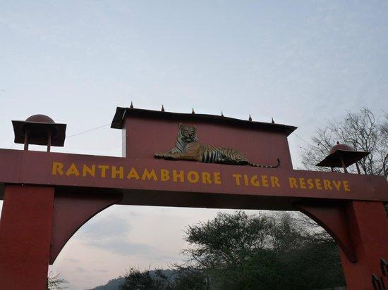 Ranthambore Vatika Resort: ranthambhore entrée