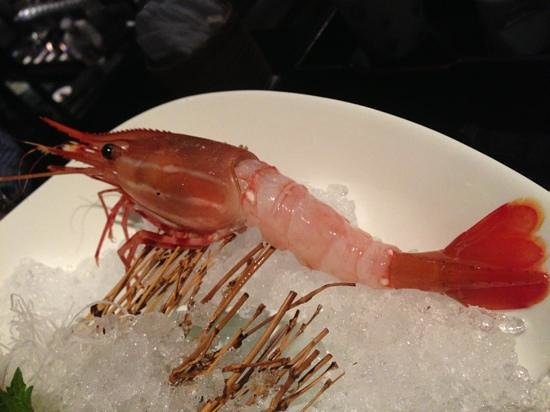 Shintori : beautiful mowtan shrimp