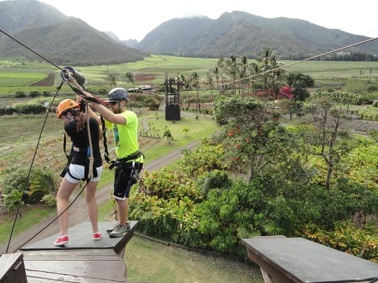 Maui Zipline Company : A landing. The guides are funny, but clearly take safety seriously.