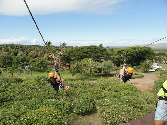 Maui Zipline Company : Enjoying the experience.