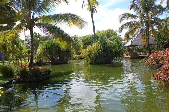 Tropical Princess Beach Resort & Spa : jardin hotel