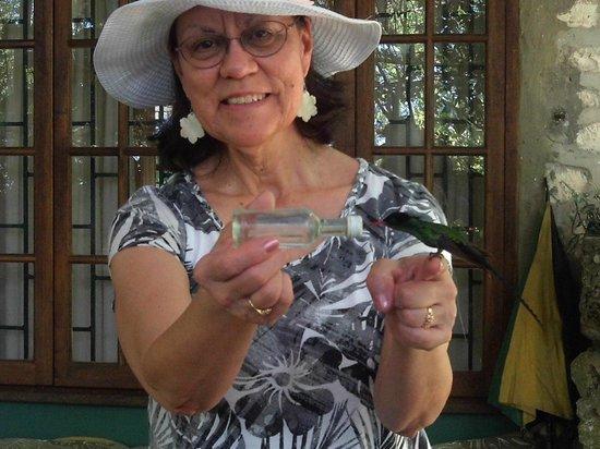 Rocklands Bird Sanctuary: hummies love grandma Linda