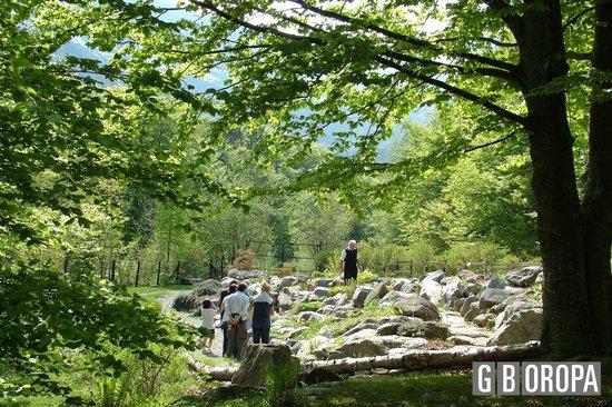 Oasi WWF Giardino Botanico di Oropa: Panoramica delle roccere ornamentali