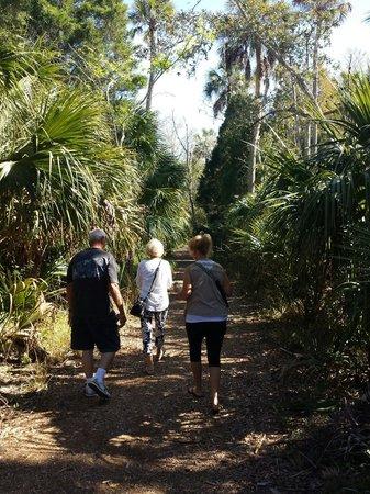 James E Grey Preserve : Easy outdoor walk.