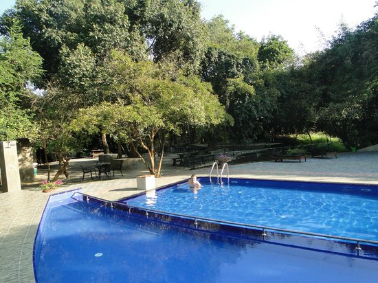 Nice Place Bungalows: zwembad