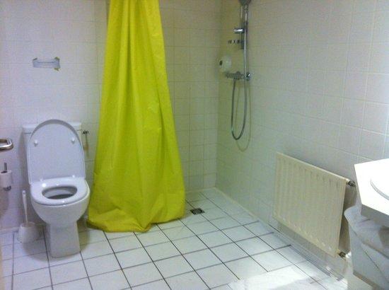 Salle de bain, chambre norme Handicapé - Photo de Hôtel du ...