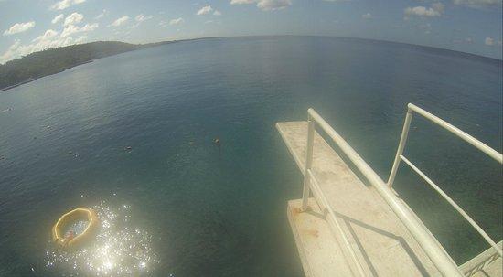Hotel Blue Cove : trampolim