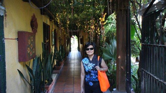 Hotel Casa Antigua : Corridors with flowers