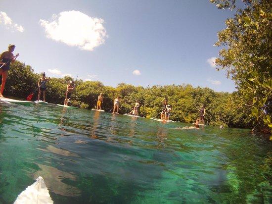 Mexican Caribbean Kitesurf & Paddlesurf: us paddleboarding