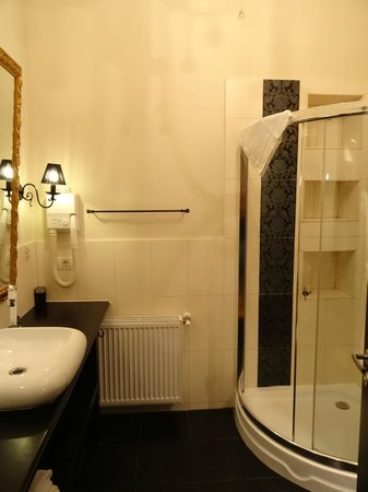 Le Boutique Hotel Moxa: Bathroom (shower stall, sink, toilet)