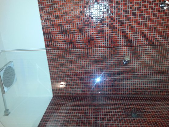 Jackson's Hotel: excellent shower.