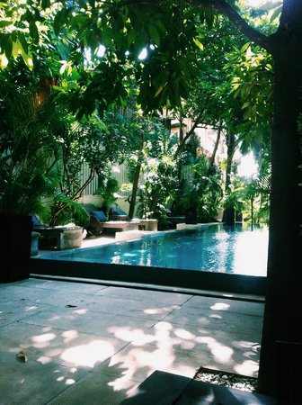 Blue Lime : Great pool area