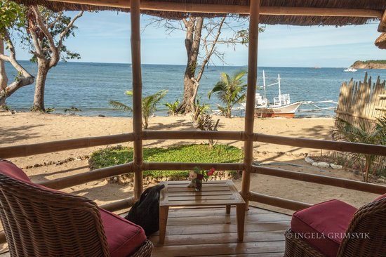 Cashew Grove Beach Resort: View from the doorway of our cottage