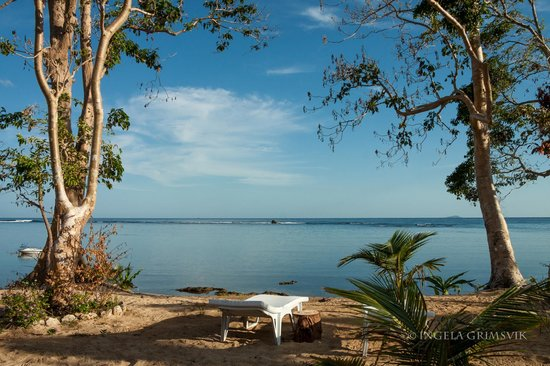 Cashew Grove Beach Resort: View from our cottage