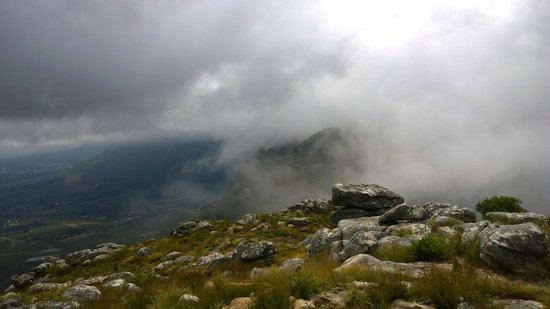 Helderberg Nature Reserve: ... mist
