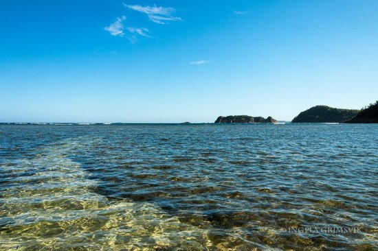 Cashew Grove Beach Resort: Path thru the seaweed out to the excursion boats and snorkeling area