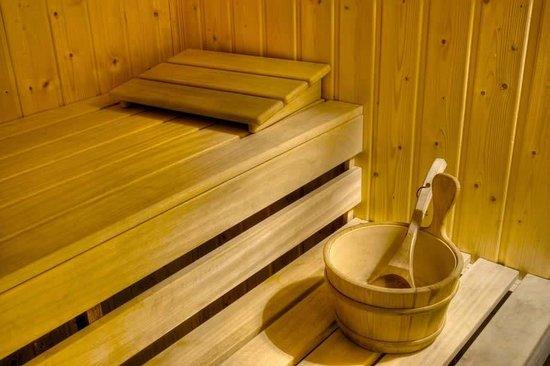 Rochester Hotel Bariloche: Sauna