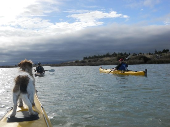 Driftwood Ecotours Limited - Day Tour: As we set out on the river