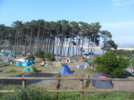 Playa de Rodas: Una vista del camping de las Islas Cíes.