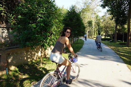 Villa Anneloi: Fietstocht doorheen botanische tuin