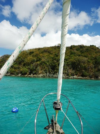 Sail with Captain Max : Beautiful waters of the Virgin Islands!