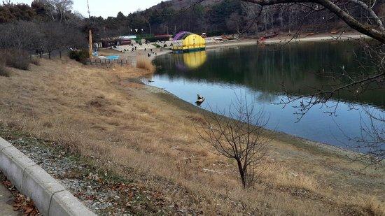 Turtle Lake: 2