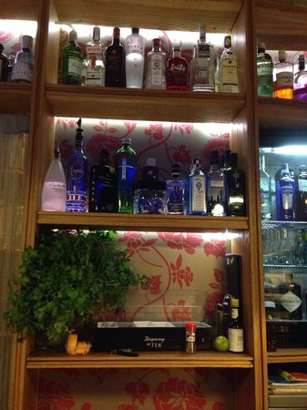 Altamirano Gin Tonic Bar