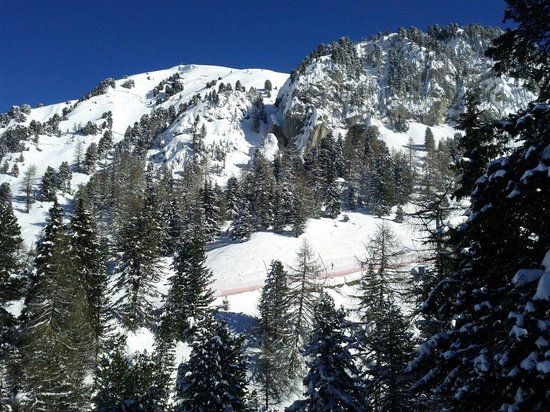 Obereggen - Ski Center Latemar: Picture
