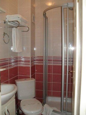 Dara Hotel Istanbul: Bathroom view