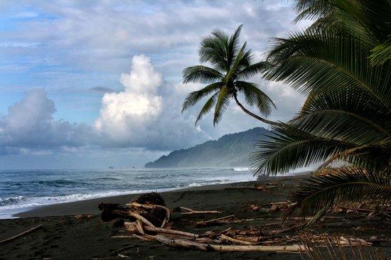 Hotel Puerto Viejo : Puerto Viejo beach. Caribbean Coast of Costa Rica