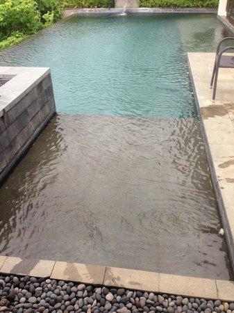 Banyan Tree Ungasan, Bali : Pool