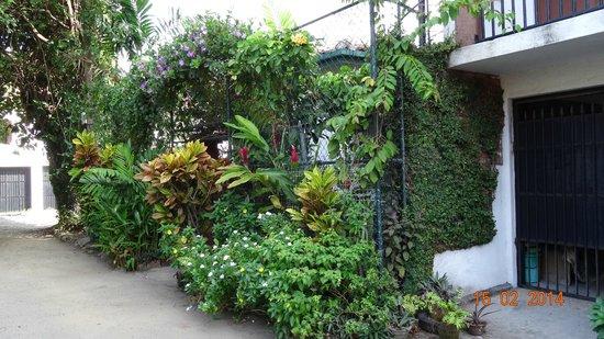 Mrs Padmini Nanayakkara's Chelsea Gardens: Entrée de la guest