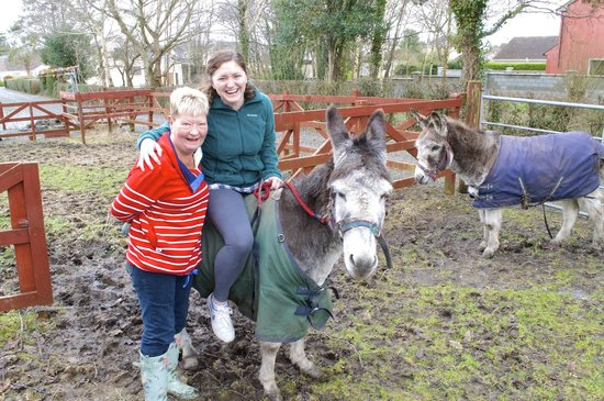 Mystical Rose Bed and Breakfast: Donkey Ride!