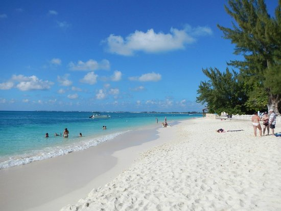 The Beach Out Front Of Royal Palms Picture Of Royal Palms Beach Club Grand Cayman Tripadvisor