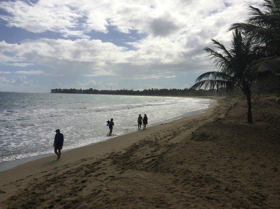 Viva Wyndham Tangerine : Beach view