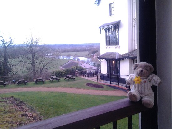 The Royal Hotel: even my bear enjoyed himself