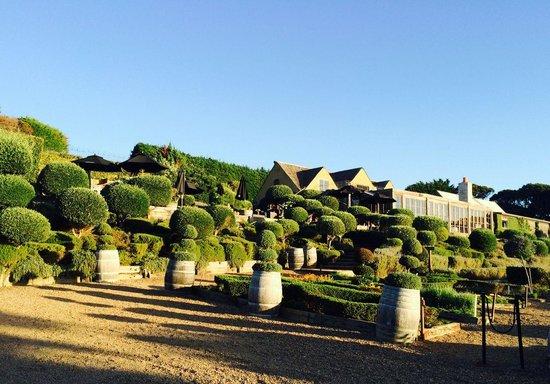 Mudbrick Vineyard & Restaurant: The restaurant and herb garden