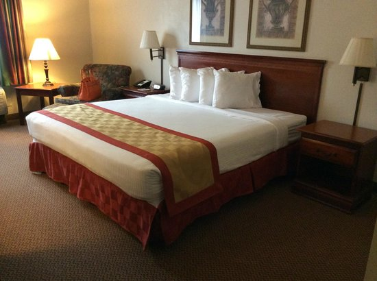 Best Western Plus Airport Inn & Suites : my room