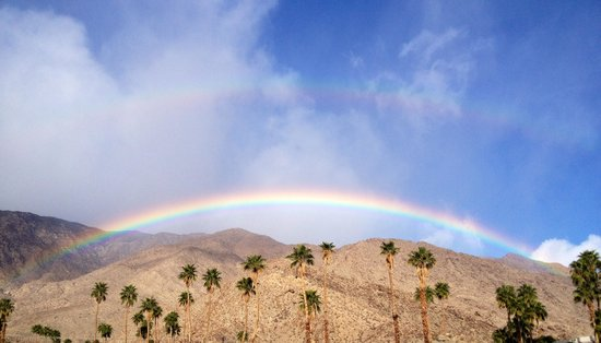 Palm Canyon Resort & Spa: The morning desert was kissed by God's halo of promise