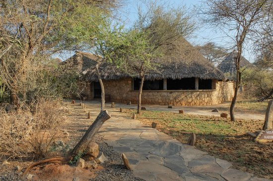 Tarangire Safari Lodge: grounds