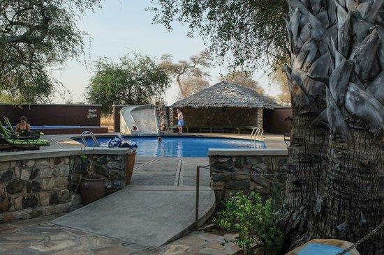 Tarangire Safari Lodge: pool