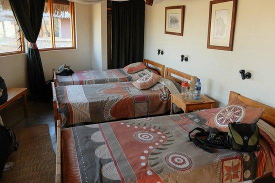Tarangire Safari Lodge: our room
