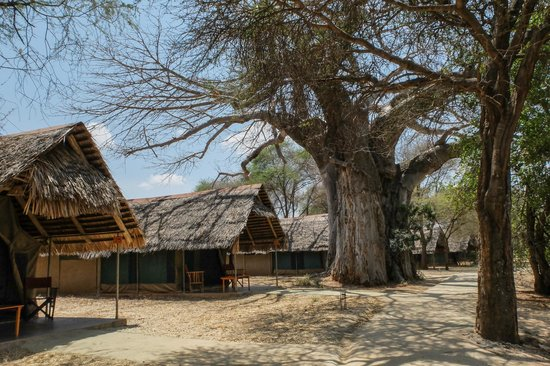 Tarangire Safari Lodge: rooms