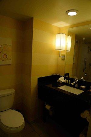The Baronette Renaissance Detroit-Novi Hotel: a standard bathroom