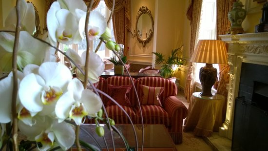 Lucknam Park: Relaxing, stylish atmosphere