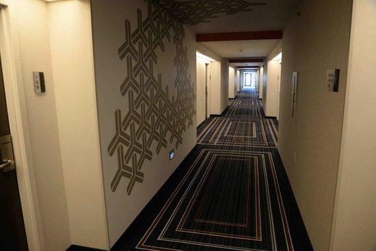 The Baronette Renaissance Detroit-Novi Hotel: Hallway. Nice update.
