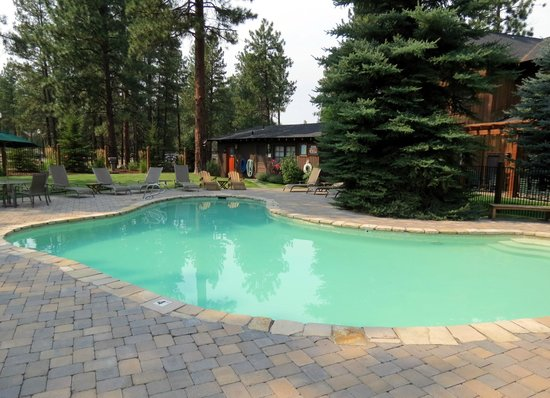 Five Pine Lodge & Spa: Swimming pool