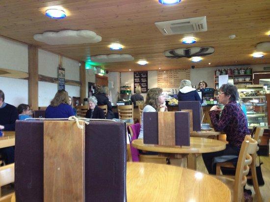 Allington Cafe: Cafe