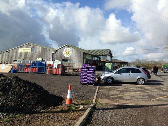 Allington Cafe: Farm Shop Outside